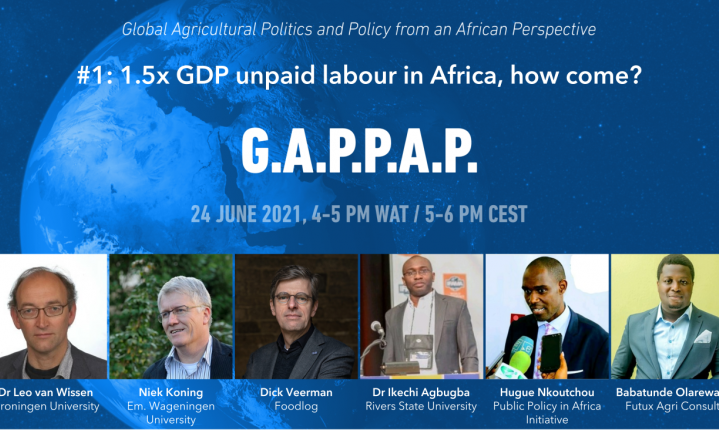 Agricultural policy making in Africa: the what and the how seem to differ