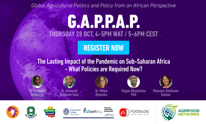 The Lasting Impact of the Pandemic on Sub-Saharan Africa - What Policies are Required Now?